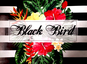 Black Bird Indumentaria