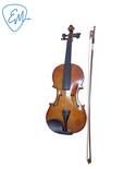 Violin Spectrun V-1 4/4 Maple